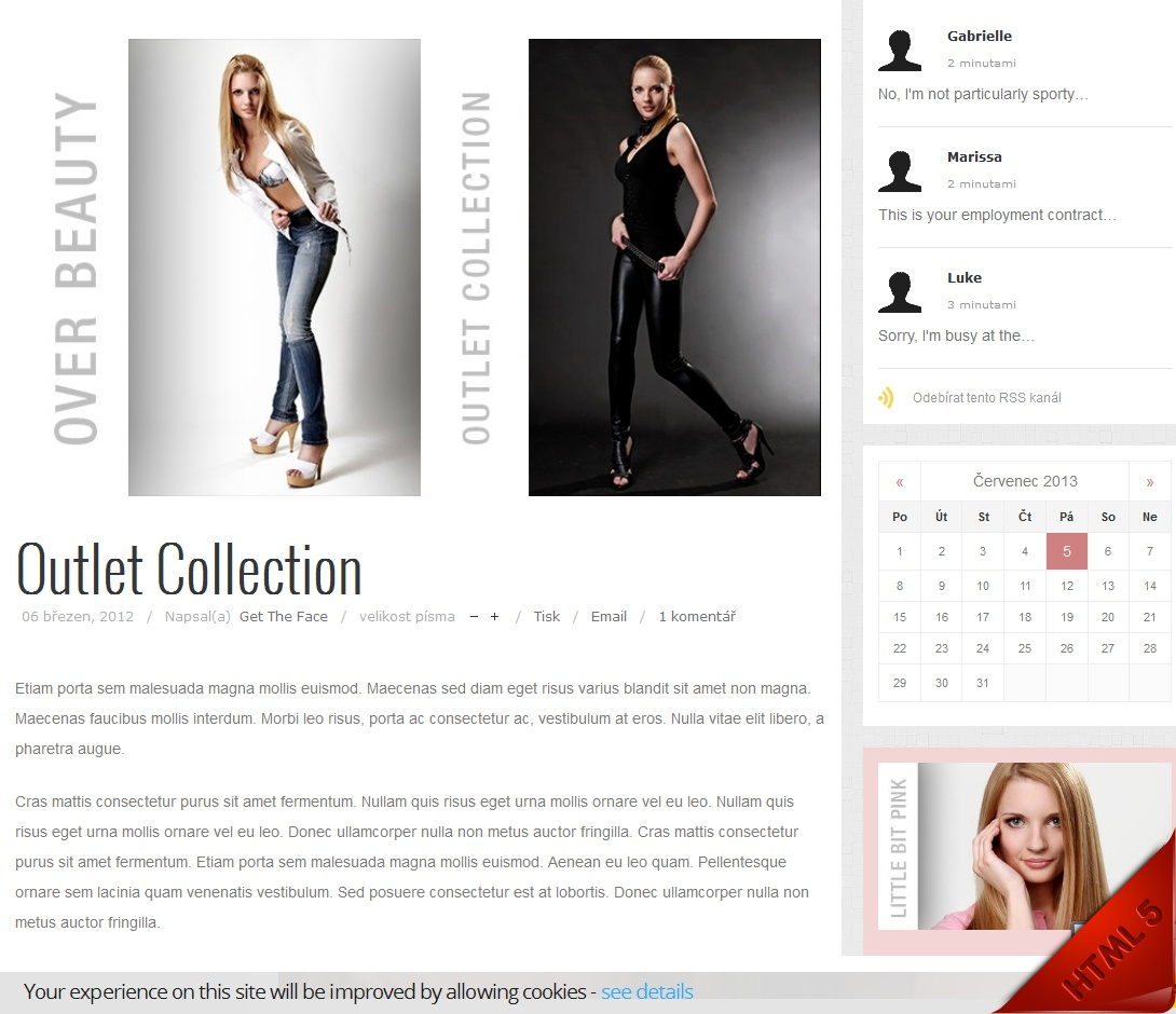 buy-professional-fashion-website